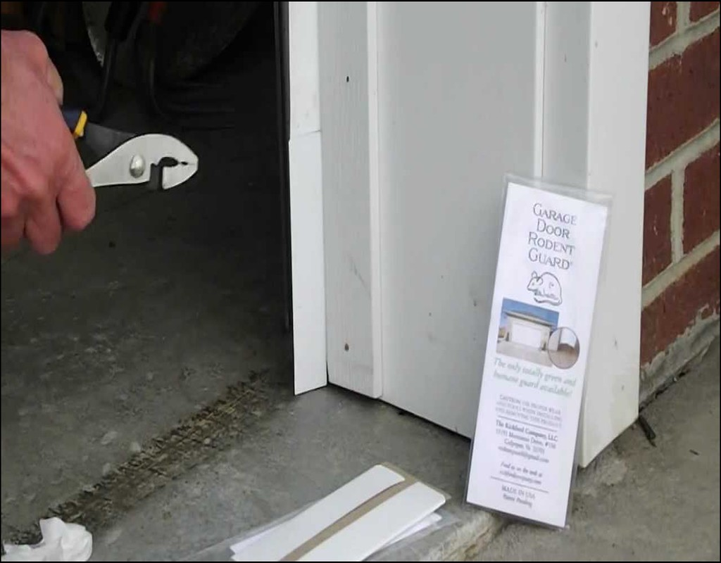 Keep Mice Out Of Garage